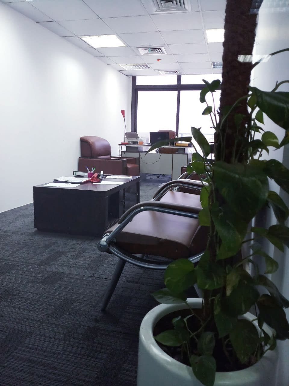 نساعدكم على انشاء مؤسسة أو شركة جديدة