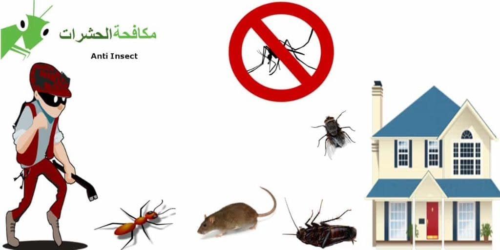 ازدهار الامارات لخدمات مكافحة الحشرات