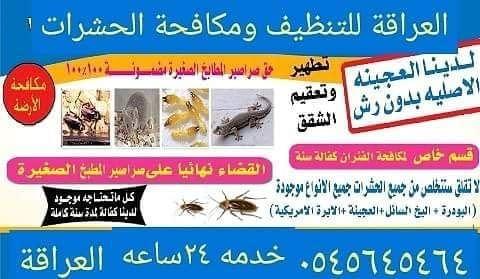 شركة العراقة لمكافحة الحشرات والقضاء
